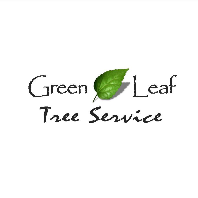 greenleaftreeoffice